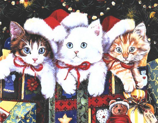 картина за рисуване по номера коледнон котки