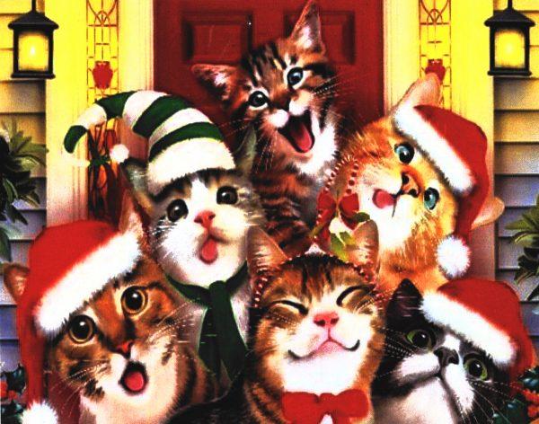 картина за рисуване по номера смешни коледни котки