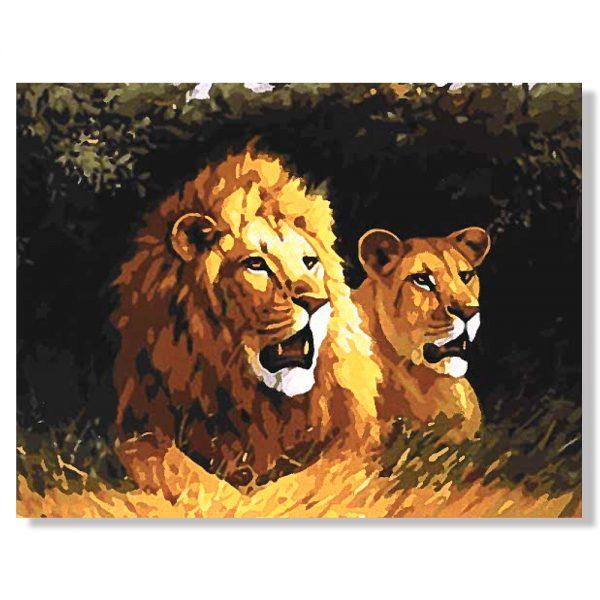 картина за рисуване по номера лъвове